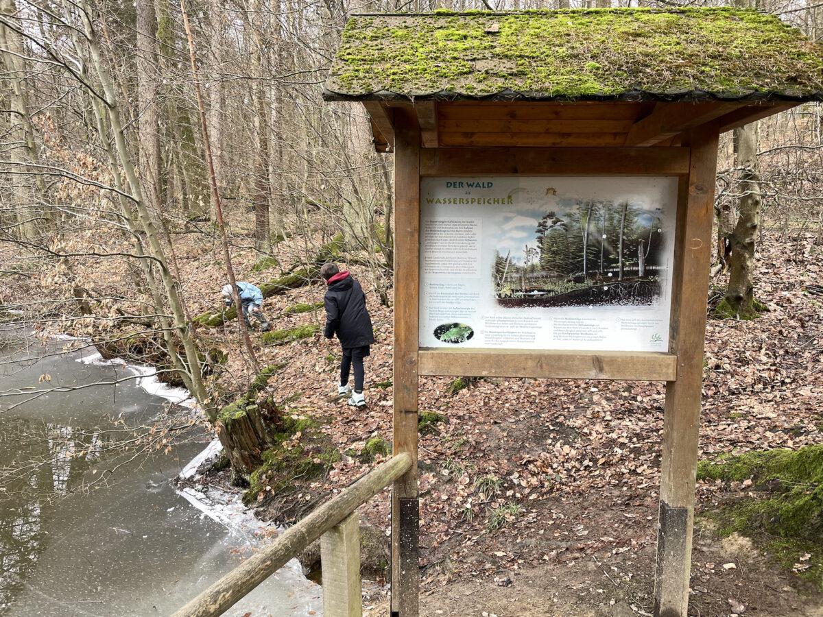 Walderlebnispfad Teich