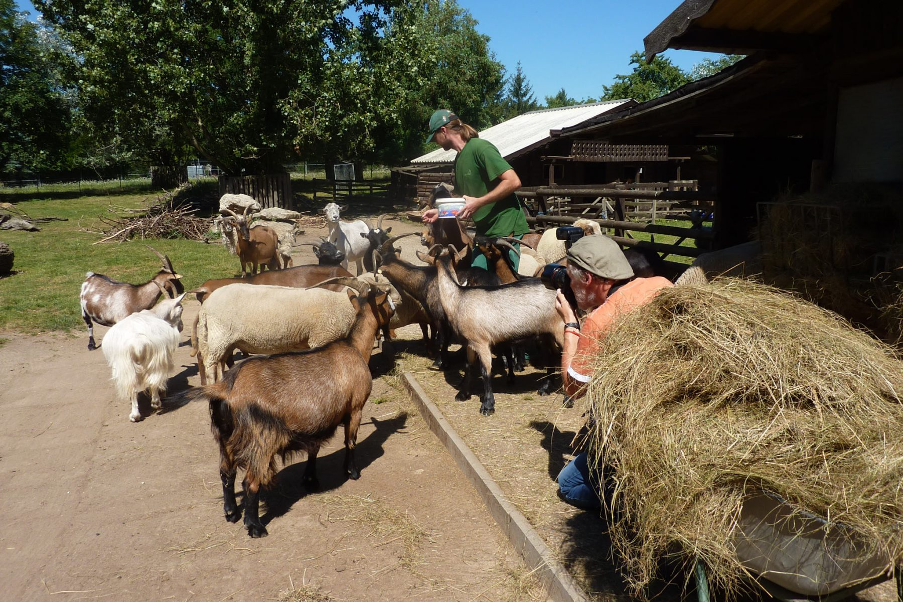Tierpark_Kastel