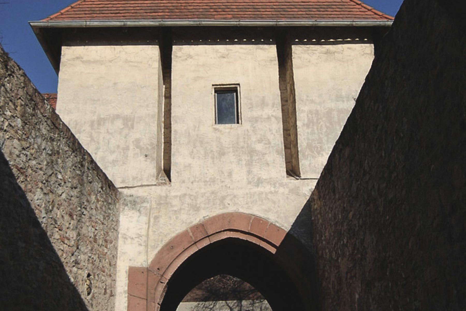 Festung Rüsselsheim
